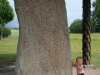 Willem hittade en stor sten